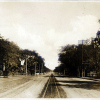Tree-lined road with trolley tracks