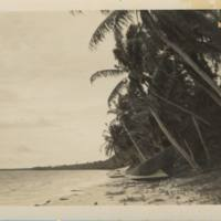 [0215 - Arno Atoll, Marshall Islands]