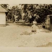 [0066 - Arno Atoll, Marshall Islands]