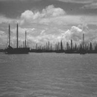 166.  Pearl River Salt Junk Fleet