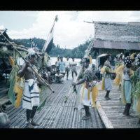[Kaya Pulau, Jayapura, West Papua (Indonesia)?] [445]