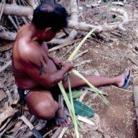 Man Weaving Palm Leaves - 14