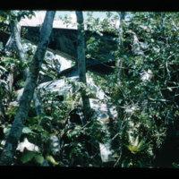 Roviana dump