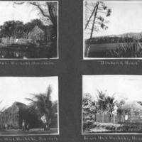 [018] Grass huts, Waikiki