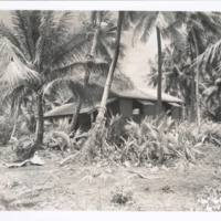 [0378 - Rongelap Atoll, Marshall Islands]