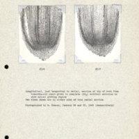 Physiology-Soils PM Negatives 116-117