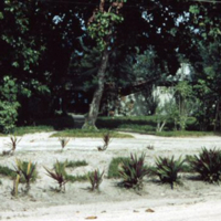 SCAPLO entrance. Anguar [Ngeaur], Palau. 14 Feb. 1950