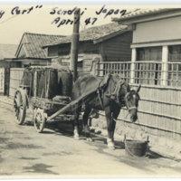 A horse hauling a cart of waste barrels, Sendai Miyagi…