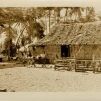 [0087 - Arno Atoll, Marshall Islands]