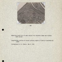 Physiology-Soils PM Negatives 063-065