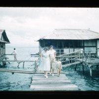 [Kayupulau, Jayapura, Papua (Indonesia)?] [383]