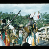 [Kaya Pulau, Jayapura, West Papua (Indonesia)?] [423]