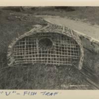 """""""U""""  - Fish Trap"""