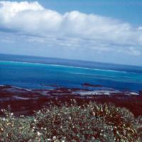 View from hbr. Saipan. Mar. 1951