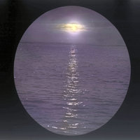 Moonlight reflected over the ocean