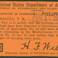 [131] Certificate of Inspection: Pineapples