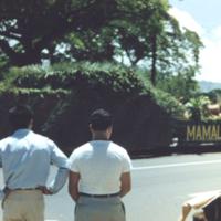 """[Parade float """"Mamala Hoe Ke ...""""]"""