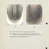 Physiology-Soils PM Negatives 096 and 098