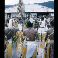 [Kaya Pulau, Jayapura, West Papua (Indonesia)?] [448]