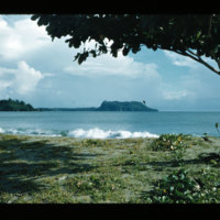 [Jayapura, West Papua (Indonesia)?] [369]