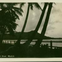 [029] Diamond Head, Waikiki