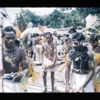 [Kaya Pulau, Jayapura, West Papua (Indonesia)?] [430]