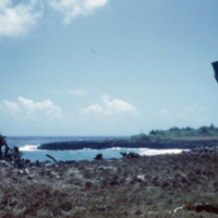 Angaur [Ngeaur, Palau]. Feb. 1951