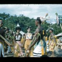 [Kaya Pulau, Jayapura, West Papua (Indonesia)?] [427]