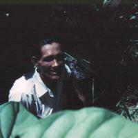 Andreas Wielbacker at Nan Matal [Nan Madol]. Ponape.…