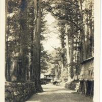 Torii gate of Nikko shrine from Nikko Kaido, Tochigi…