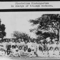 Plantation Kindergarden - In charge of trained workers