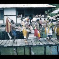 [Kaya Pulau, Jayapura, West Papua (Indonesia)?] [431]