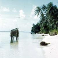 Benjo, Falo, Truk Atoll. Sept. 1950
