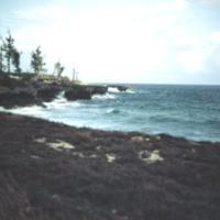 Angaur's [Ngeaur] coastline. Palau. 14 Feb. 1950