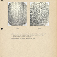 Physiology-Soils PM Negatives 120-121