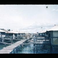[Kaya Pulau, Jayapura, West Papua (Indonesia)?] [454]