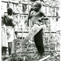Apprentice: This little Melanesian boy helps his elders…