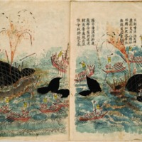 Kujiratori (Whaling 鯨トリ)