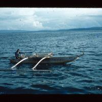 [Kayupulau, Jayapura, Papua (Indonesia)?] [390]