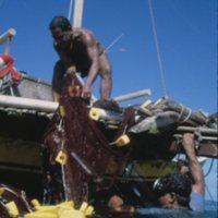 Men Hauling in Fishing Net