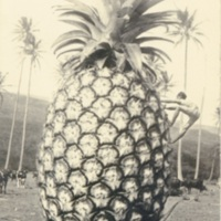 [A big pinapple with a man climbing to the top]