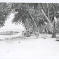 [0406 - Rongelap Atoll, Marshall Islands]