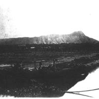 Diamond head with Waikiki taro fields