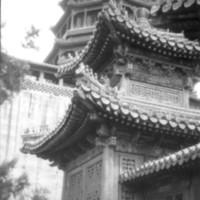 184. Purple Palace, Peking